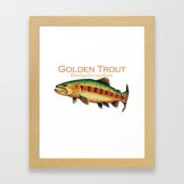 Golden Trout Framed Art Print