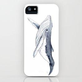Baby humpback whale (Megaptera novaeangliae) iPhone Case
