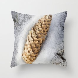 Spruce Cone 4 Throw Pillow