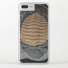 Small trilobite fossil Clear iPhone Case