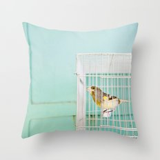 Finch against Turquoise Wall, Jerusalem Throw Pillow