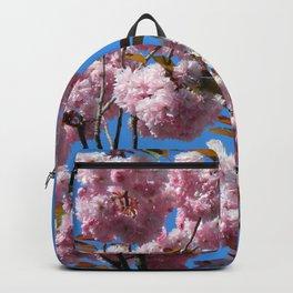 Cherry B8 Backpack