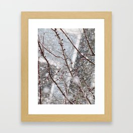 The Last Snowfall Framed Art Print