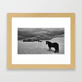 Iceland_ Pony_Winter Framed Art Print