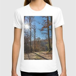 A beautiful day in the woods T-shirt