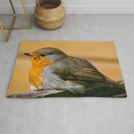 Robin Red Breast Rug
