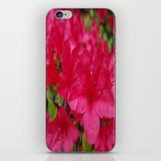I'm Just a Flower iPhone Skin