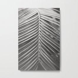 Palm Leaf in Black and White Metal Print