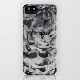 Desert Rose in Black and White iPhone Case