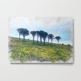 Trapani art 13 Sicily Metal Print