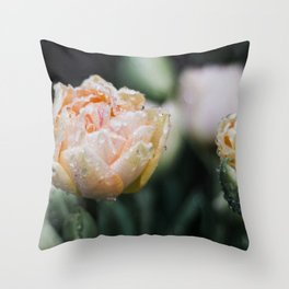 Returning Spring Throw Pillow