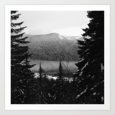 Snowy view along the Trail of Shadows. Art Print