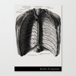 Breathe. A PSA for stressed creatives. Canvas Print
