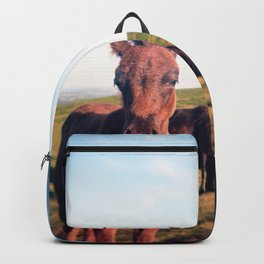 Dartmoor Pony Portrait (2) Backpack