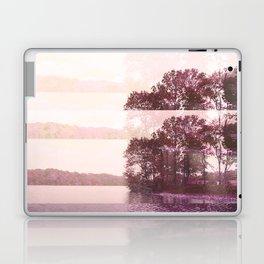 Marsh Laptop & iPad Skin