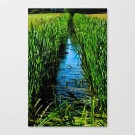 Small ditch Canvas Print