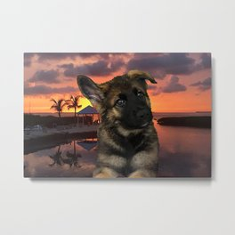 Loki German Shepherd Metal Print