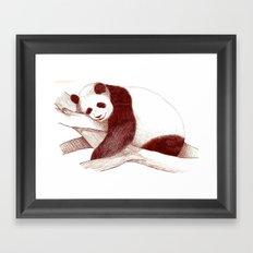 Sleeping Panda Framed Art Print