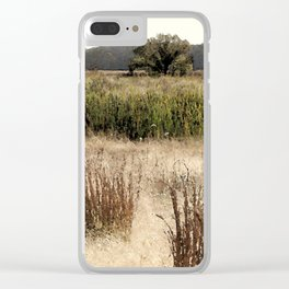 Late summer at the wetlands Clear iPhone Case
