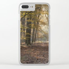 Towards the Sunlight Clear iPhone Case