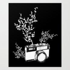 Minolta Art Print
