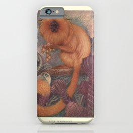 Finn - The Wild Beasts of the World (1909) - Vol 1 Plate 13 Lion Marmoset iPhone Case