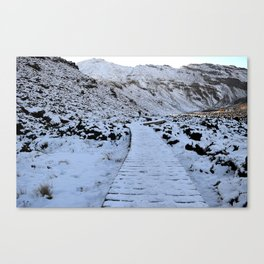 Snow in the Tongariro Canvas Print