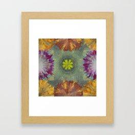 Trabes Stripped Flowers  ID:16165-151640-97070 Framed Art Print