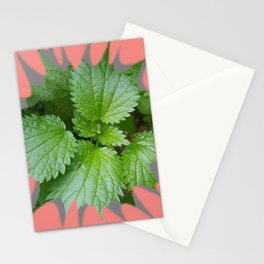 Nettle over salmon background  Stationery Cards