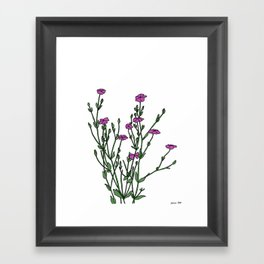 Connecticut Wildflowers Framed Art Print