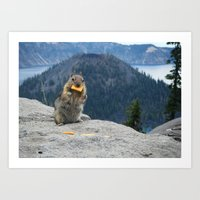 Critter at Crater Lake Art Print