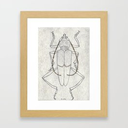 Insecto 06 Framed Art Print