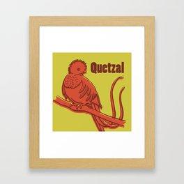 Animal Alphabet - Quetzal Framed Art Print