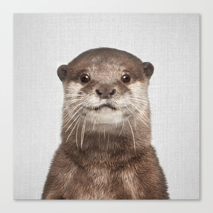 Otter - Colorful Canvas Print