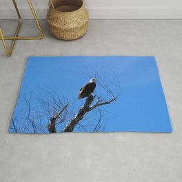 Clear Sight (Bald Eagle) Rug