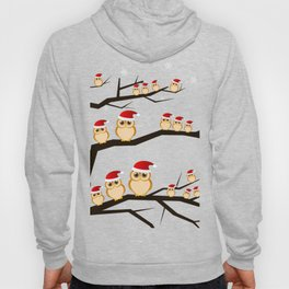 christmas owls Hoody