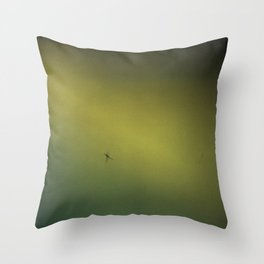 Spider in the Fog Throw Pillow