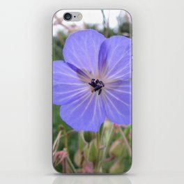Meadow Cranesbill iPhone Skin
