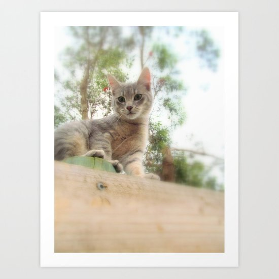 What's up kitty? Art Print