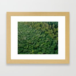 Arial tropical forest Framed Art Print