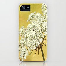 Queen Anne's Lace Flower Head on Yellow iPhone (5, 5s) Slim Case