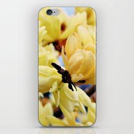 Yellow Magnolia Flowers iPhone Skin