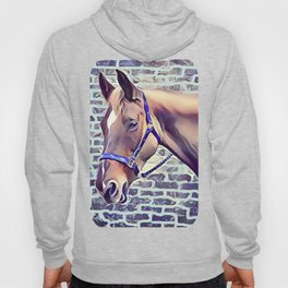 Brown Horse with Harness Hoody