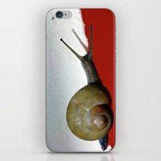 In a rush... iPhone & iPod Skin