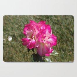 Beautiful Rainbow Sherbet Rose, Single Rose, Pink Flower Cutting Board