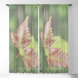 Red Amour Spring Leaves Sheer Curtain