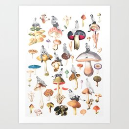 Sitting High on Mushrooms Art Print