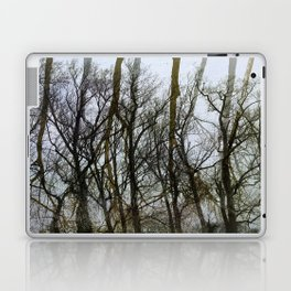 Treescape Laptop & iPad Skin