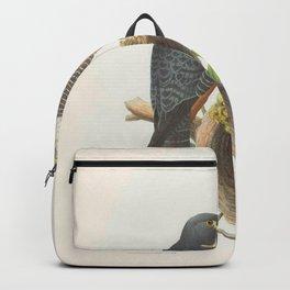 003 Golden Sparrow Hawk falco aurantius5 Backpack
