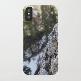 Crystalline Moss iPhone Case